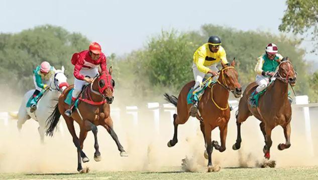 horse-racing-india